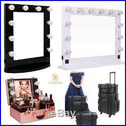 Hollywood Makeup Light Vanity Mirror Artist Salon Dressing Cosmetic Case Box Bag